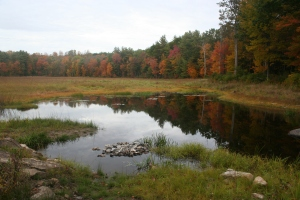 New Hampshire  Oct 2012